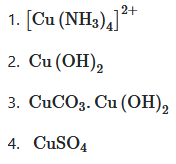 Urea reacts with water to form A which will decompose to form B. B when passed through Cu2+ (aq), deep blue color solution C is formed. What is the formula of C from the following?