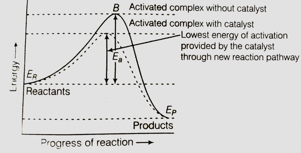 The addition of a catalyst during a chemical reaction alters which of the following quantities? 1. Internal energy 2. Enthalpy 3. Activation energy 4.